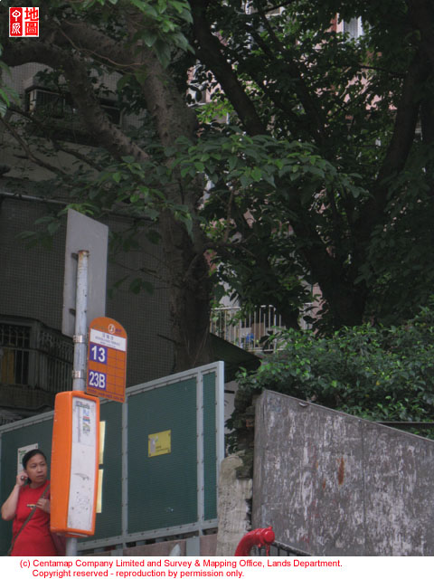 Castle road opposite to woodlands terrace for 23 woodlands terrace